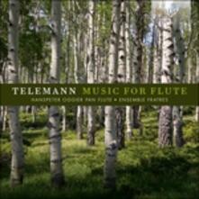 Musica per flauto - CD Audio di Georg Philipp Telemann
