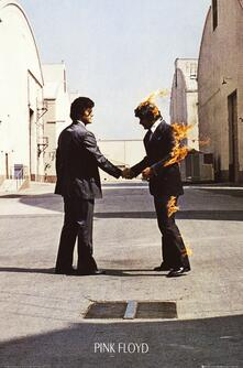 Poster Pink Floyd. Wish You Were Here 61x91,5 cm.