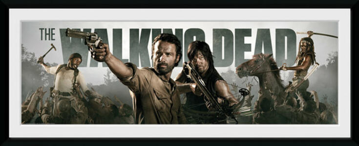Foto In Cornice Walking Dead. Survival