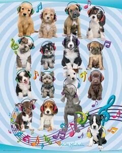 Poster Keith Kimberlin. Puppies Headphones 2 40x50 cm.