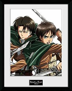 Foto in Cornice Attack on Titan