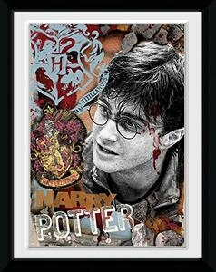 Stampa In Cornice 15x20 cm. Harry Potter. Harry