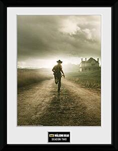Stampa In Cornice 30x40 cm. Season 2. Walking Dead
