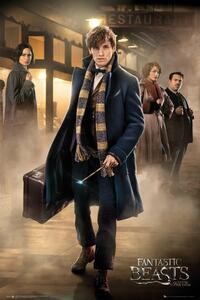 Poster Fantastic Beasts. Group Stand 61x91,5 cm.