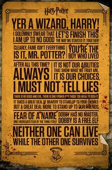 Poster Harry Potter. Quotes 61x91,5 cm.
