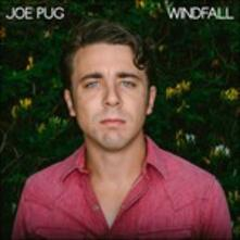 Windfall - Vinile LP di Joe Pug