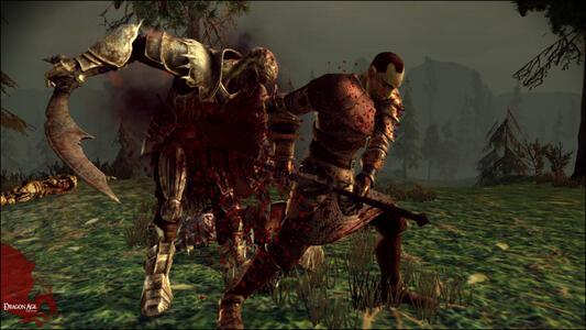 Dragon Age. Origins Collector's Edition - 3