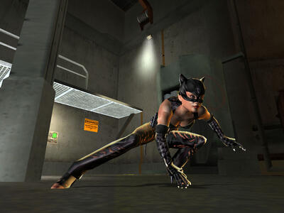 Catwoman - 5