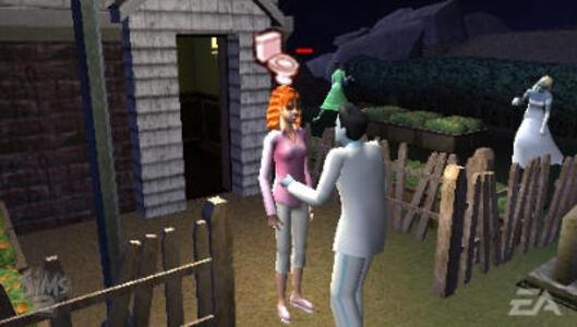 Essentials The Sims 2 - 10