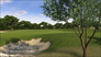 Videogioco Tiger Woods PGA Tour 2013 Xbox 360 5