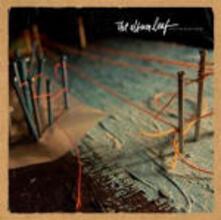 Into the Blue - CD Audio di Album Leaf