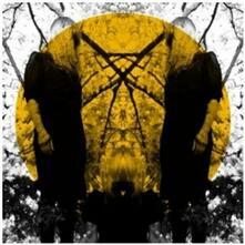 Feel it Break - Vinile LP di Austra