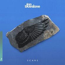 Scars - Vinile LP di Ilan Bluestone