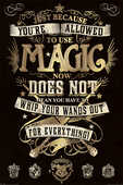 Idee regalo Poster Harry Potter. Magic Pyramid