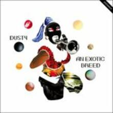 An Exotic Breed - Vinile LP di Dusty