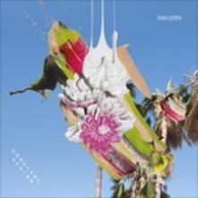 Constant Spring - Vinile LP di Ogris Debris