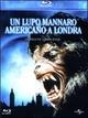 Cover Dvd Un lupo mannaro americano a Londra