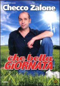 Cover Dvd Che bella giornata (DVD)