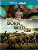 Film IMAX. Born to Be Wild 3D David Lickley