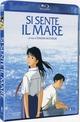 Cover Dvd DVD Si sente il mare