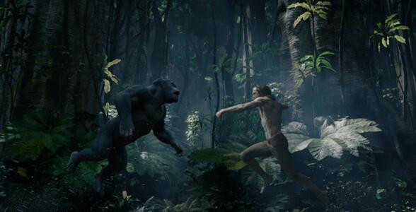 The Legend of Tarzan di David Yates - DVD - 7