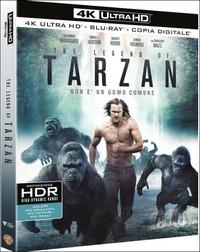 Cover Dvd The Legend of Tarzan (Blu-ray + Blu-ray 4K Ultra HD) (Blu-ray)