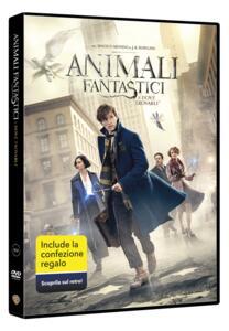 Animali fantastici e dove trovarli. Gift Pack (DVD) di David Yates - DVD