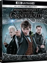 Cover Dvd Animali fantastici: I crimini di Grindelwald (Blu-ray + Blu-ray Ultra HD 4K)