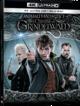 Cover Dvd DVD Animali Fantastici - I Crimini di Grindelwald