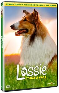 Film Lassie torna a casa (DVD) Hanno Olderdissen