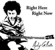 Right Here Right Now - CD Audio di Andy Collins