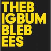 Vinile The Big Bumble Bees Baby Dee Eliot Bates