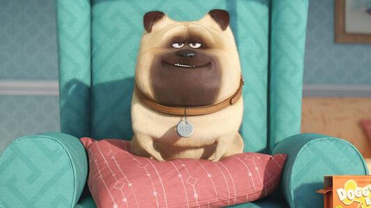 Pets. Vita da animali di Chris Renaud,Yarrow Cheney - Blu-ray - 5