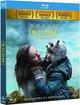 Cover Dvd DVD Room