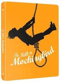 Cover Dvd Il buio oltre la siepe. Con Steelbook