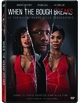 Cover Dvd DVD When the Bough Breaks
