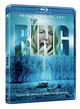 Cover Dvd DVD The Ring