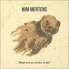 What Are We Locks to do - CD Audio di Wim Mertens