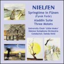 Nielsen - Springtime in - CD Audio di Carl August Nielsen