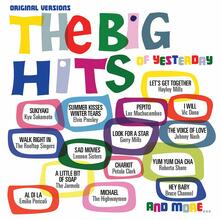 Big Hits of Yesterday - CD Audio