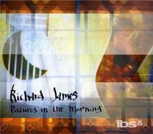 Pictures in the Morning - CD Audio di Richard James