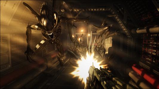 Videogioco Aliens vs. Predator Hunter Edition Xbox 360 4