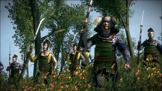 Foto Cover di Total War: Shogun 2: Il Tramonto dei Samurai, Videogioco prodotto da Sega 6