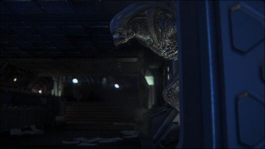 Videogioco Alien: Isolation Edizione Ripley Xbox One 5