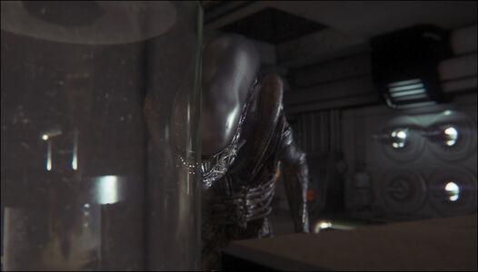 Videogioco Alien: Isolation Edizione Ripley Xbox One 7