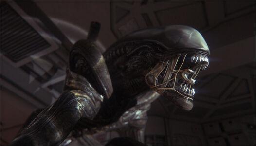 Videogioco Alien: Isolation Edizione Ripley Xbox One 8