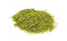 Static Grass. Prato Di Erba, 2.5Mm