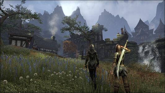 Videogioco Elder Scrolls Online: Tamriel Unlimited PlayStation4 2