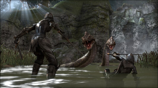 Videogioco Elder Scrolls Online: Tamriel Unlimited PlayStation4 3