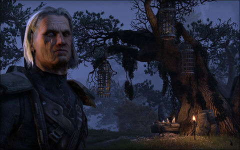 Videogioco Elder Scrolls Online: Tamriel Unlimited PlayStation4 8